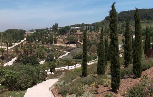 Jardín Botánico de Barcelona. Valérie75 / Wikimedia Commons. CC BY-SA 3.0