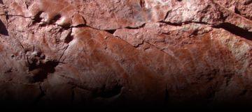El Pallars Jussà alberga las huellas fósiles más antiguas de Cataluña